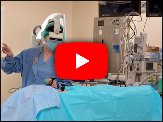 A screenshot of a video of augemented reality surgery